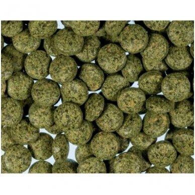 Kessler Spirulina skęstančios tabletės dugninėms žuvims, 0,5kg maišelyje