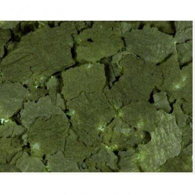 Kessler 30 %Spirulina dribsniai  žuvims, 1kg plastikiniame kibirėlyje