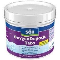 Active&Oxygen Deposit  Tabletės tvenkiniui